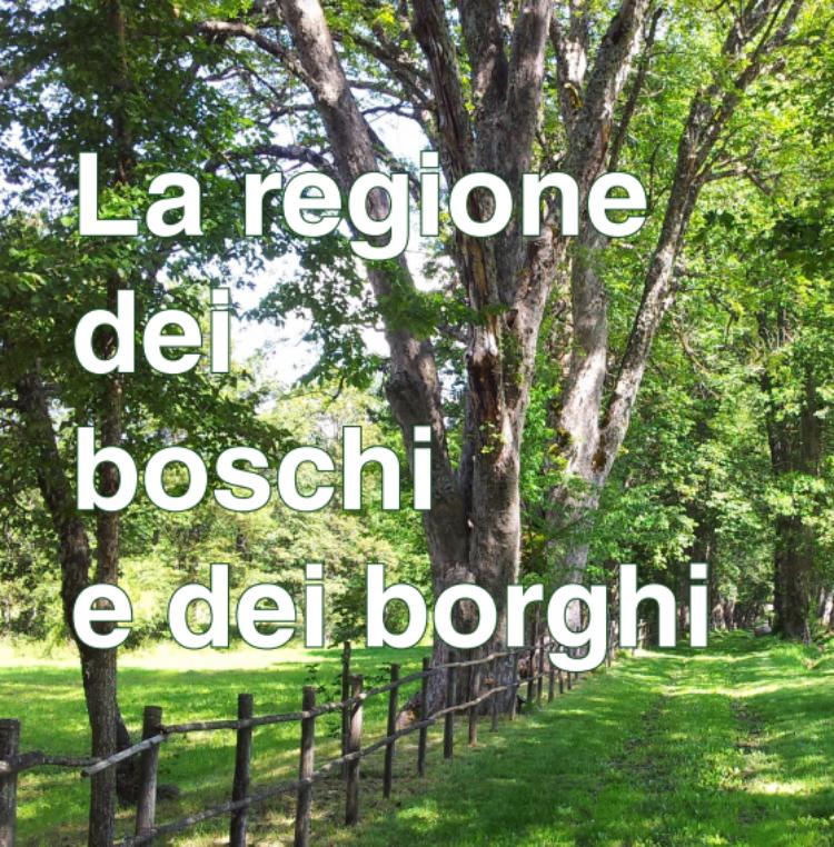 Boschi&Borghi